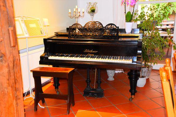 gallery-hanseatic-djs-185674E9606-9927-400A-9CAB-1613CF39A789.jpg